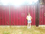 Забор из профнастила Киев,  решётки на окна Киев,  ворота для дома и дачи Киев,  ворота из профнастила Киев